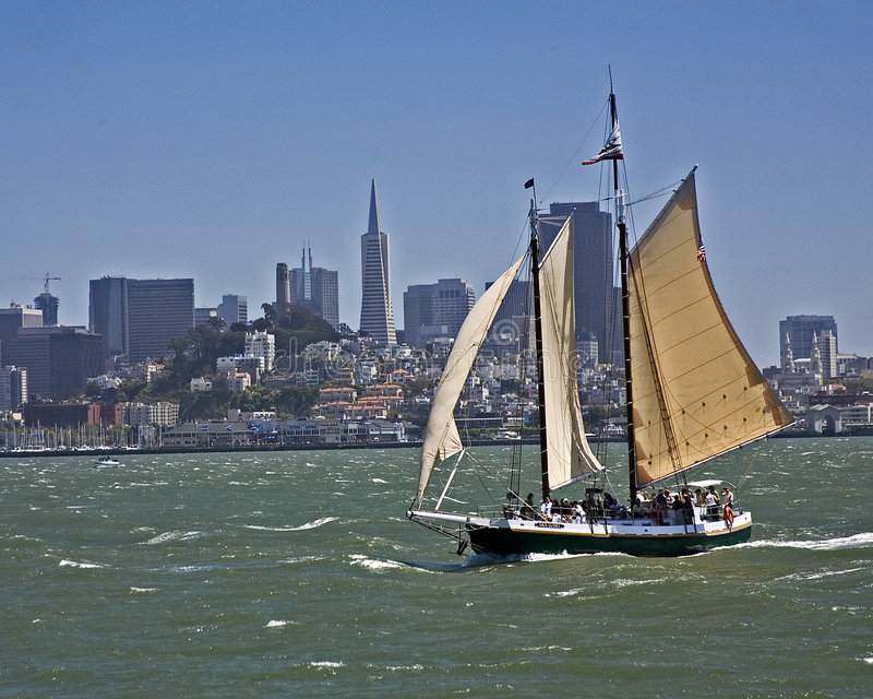 Tondeuse à San Francisco Bay photographie stock