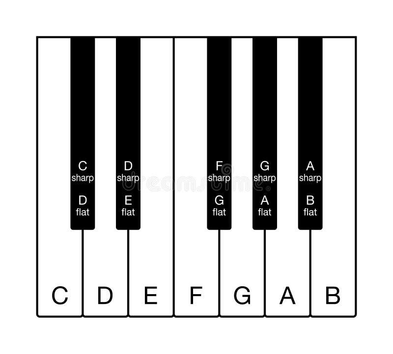 Twelve-tone chromatic scale on musical keyboard stock illustration