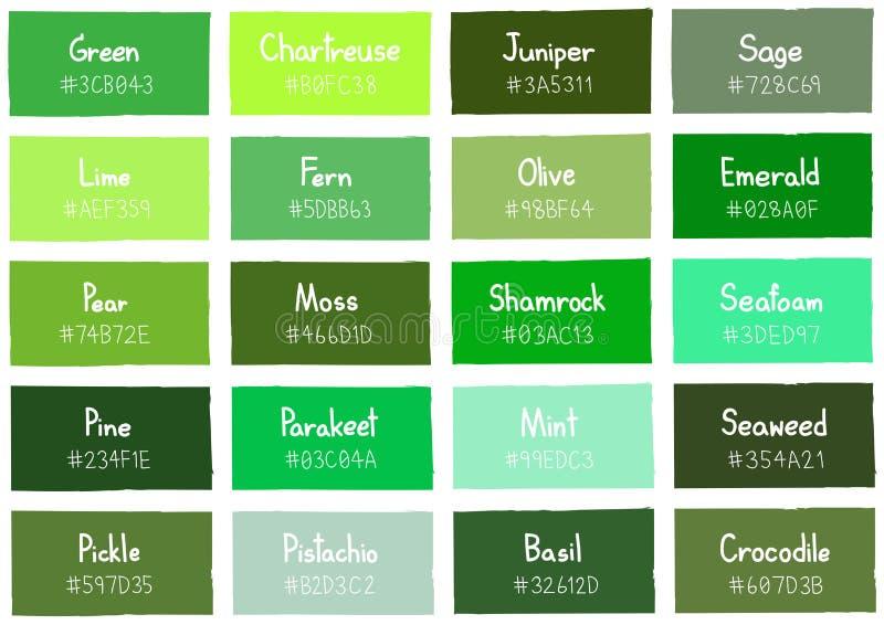 Tone Color Shade Background Verde Con Código Y Nombre Ilustración ...