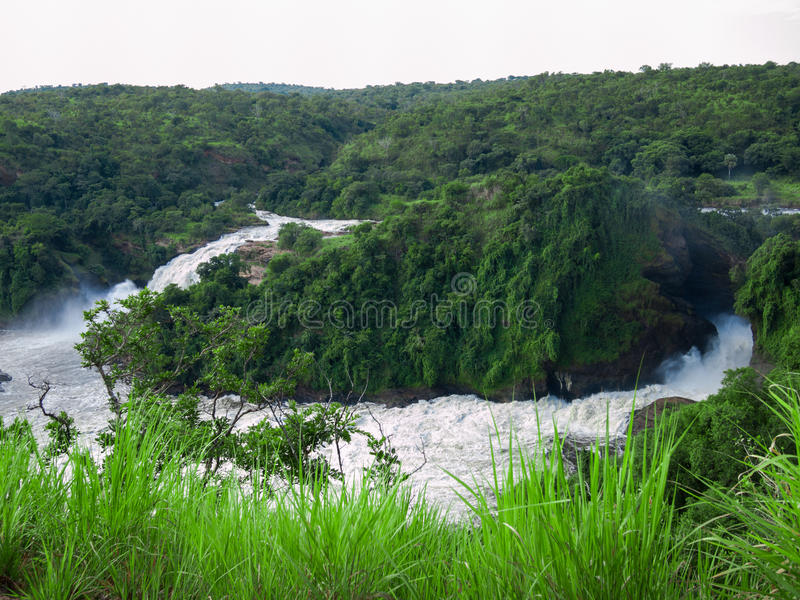 Toned image of majestic waterfall in the park Murchison Falls in Uganda against the background of the jungle stock image