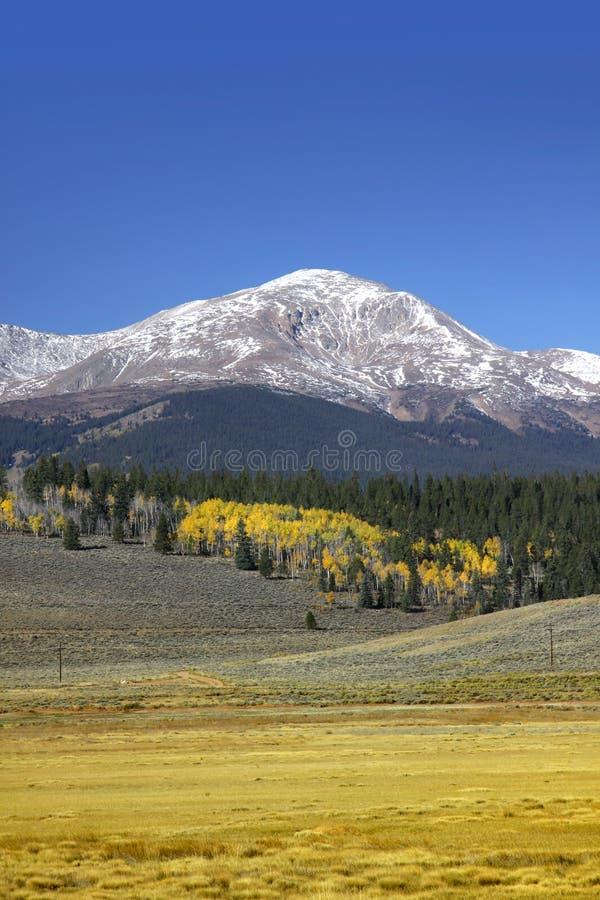 Toneel de herfstlandschap in Colorado stock foto