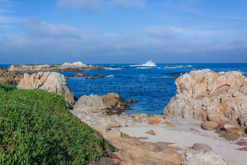 Toneel de Kustlandschap van Californi? royalty-vrije stock afbeelding