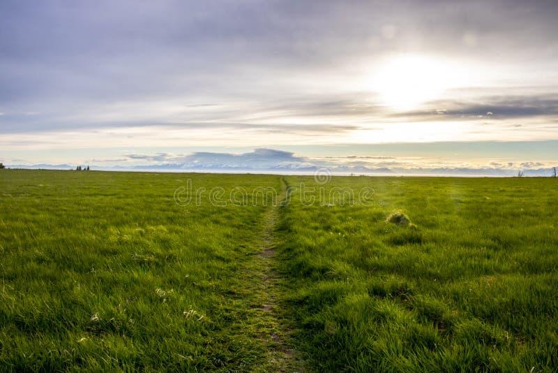 Toneel overzie dichtbij Ninilchik, Alaska royalty-vrije stock fotografie
