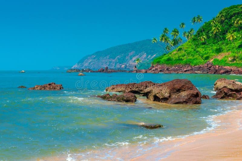 Toneel tropisch strand stock afbeeldingen