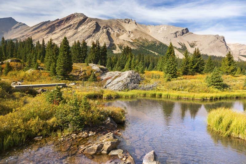 Toneel van de Berg Rode Herten van Landschapspipestone van de Merenbanff Nationale het Park Canadese Rotsachtige Bergen stock afbeeldingen