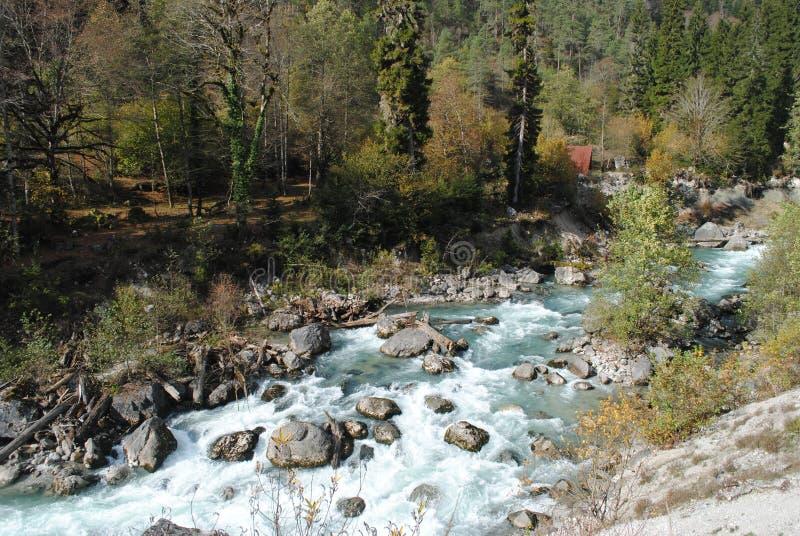 Toneel waterval in het bos stock fotografie