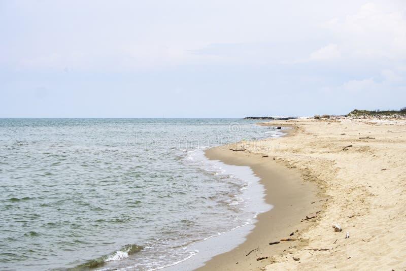 Toneel wild zandig strand in het Natuurreservaat van Migliarino San Rossore Massaciuccoli Dichtbij Pisa, in Toscani?, Itali? wijd stock fotografie