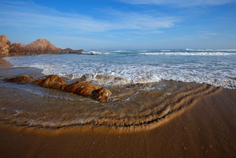 Toneel zandig strand met golven en blauwe hemel stock foto's