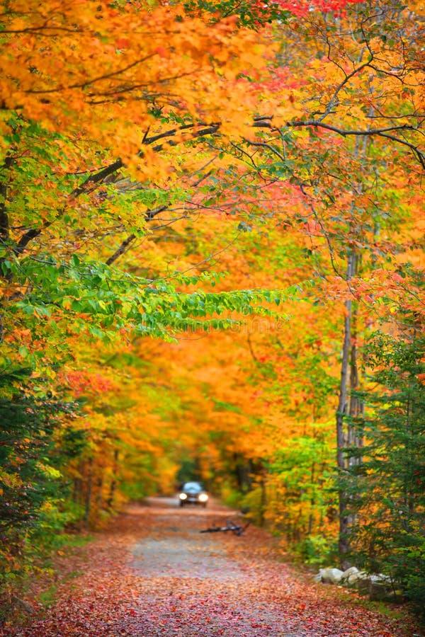 Toneelaandrijving door New England stock foto's