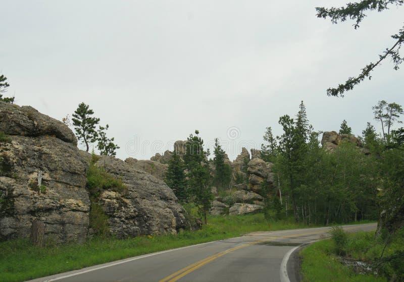 Toneelaandrijving op Naaldenweg, Custer State Park, Zuid-Dakota royalty-vrije stock fotografie