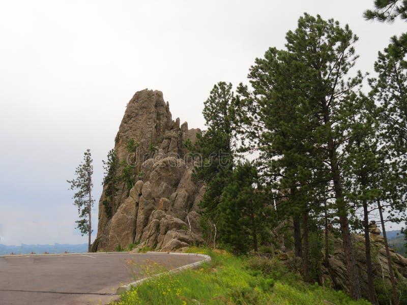 Toneelaandrijving op Naaldenweg, Custer State Park, Zuid-Dakota royalty-vrije stock afbeelding