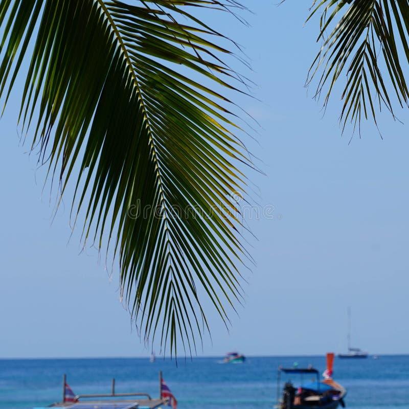 Toneelbaai van Phi Phi-eiland met Thaise boten, Krabi, Thailand stock foto's