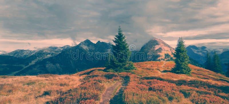 Toneelberglandschap met wandelingsweg stock fotografie