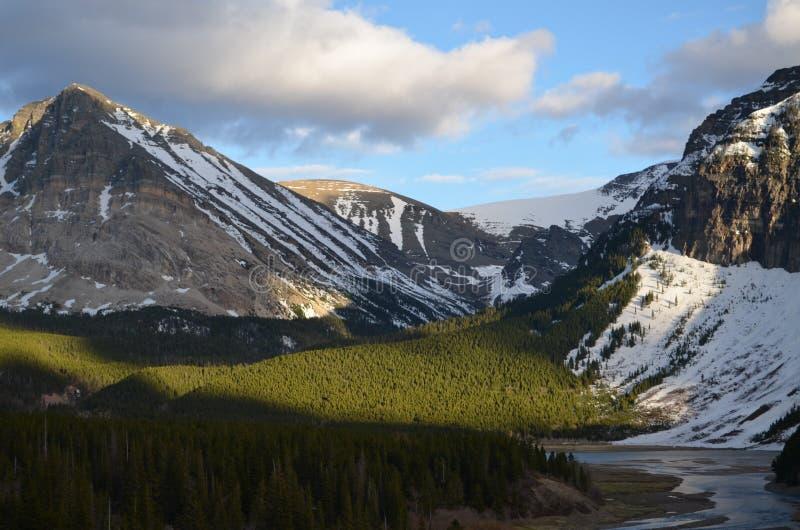 Toneelbergmening in Montana! stock fotografie