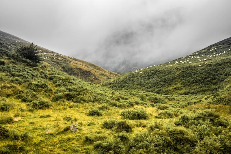 Toneellandschap in Iraty-bergen in zomer, Baskisch land, Frankrijk royalty-vrije stock afbeeldingen