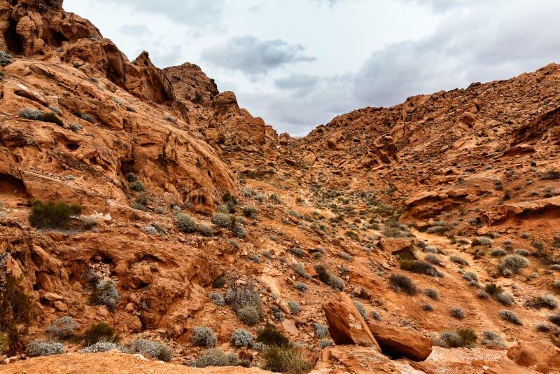 Toneellandschap van Rotsvormingen in woestijn, de V.S. royalty-vrije stock foto's