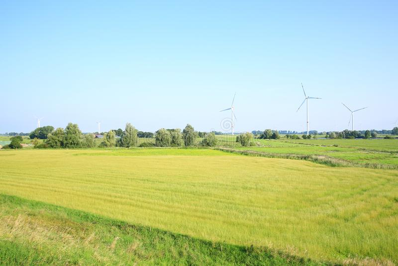 Toneellandschap in Wangerland, Friesland, Nedersaksen, Duitsland stock afbeeldingen
