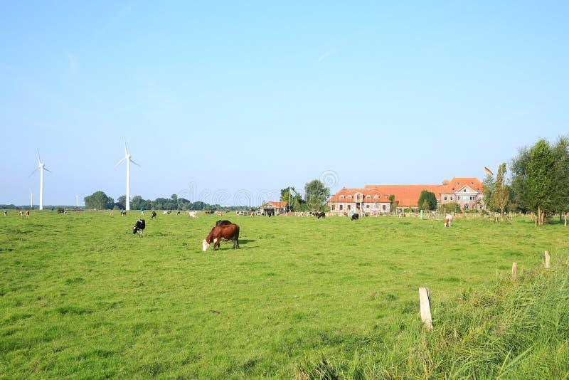 Toneellandschap in Wangerland, Friesland, Nedersaksen, Duitsland royalty-vrije stock afbeelding