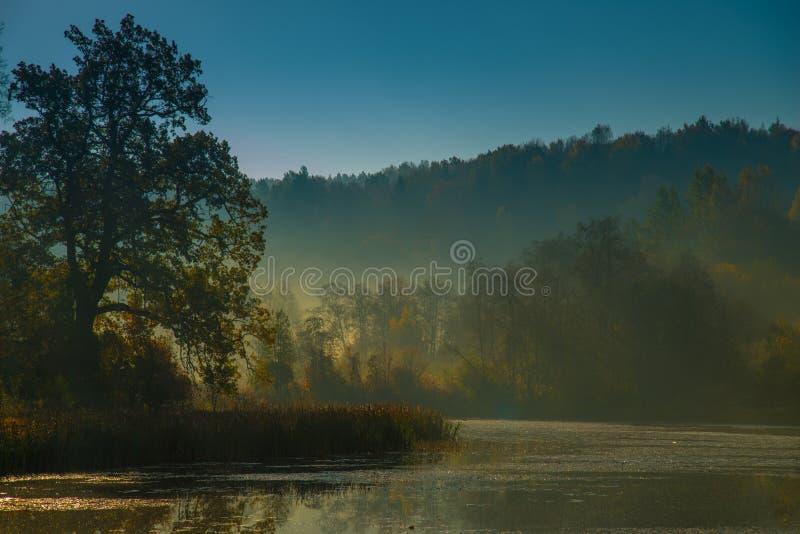 Toneelmeerlandschap in vroege ochtend stock afbeeldingen