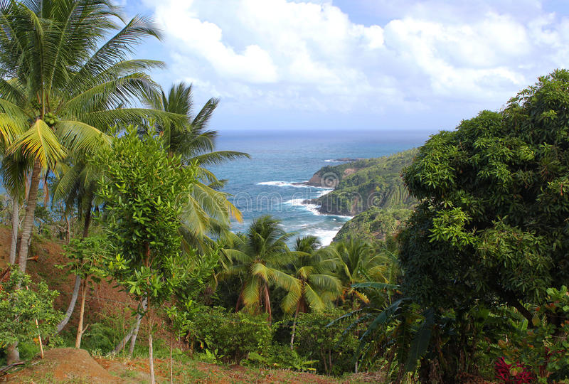 Toneelmening aan de kustlijn van de Atlantische Oceaan, Dominica, Caraïbische eilanden stock fotografie