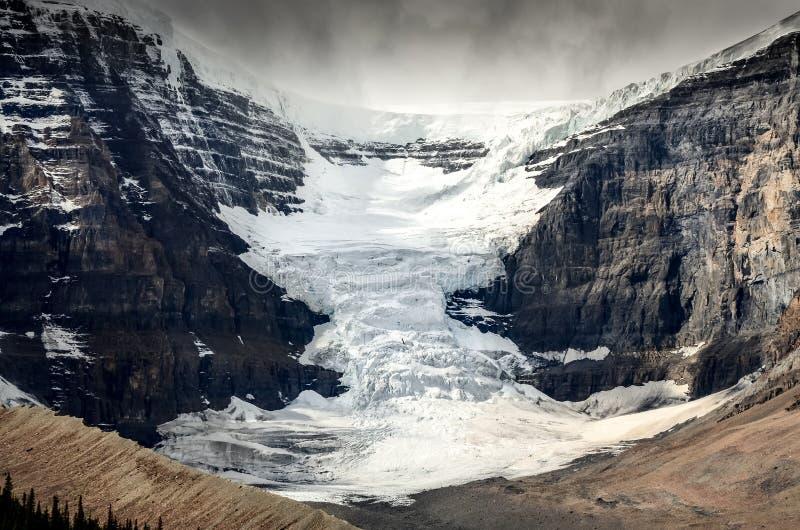 Toneelmening van de gletsjer van Colombia Icefield in Jaspis NP, Canada royalty-vrije stock foto