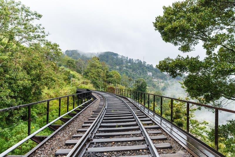 toneelmening van groene bomen en lege spoorwegweg, sri royalty-vrije stock foto