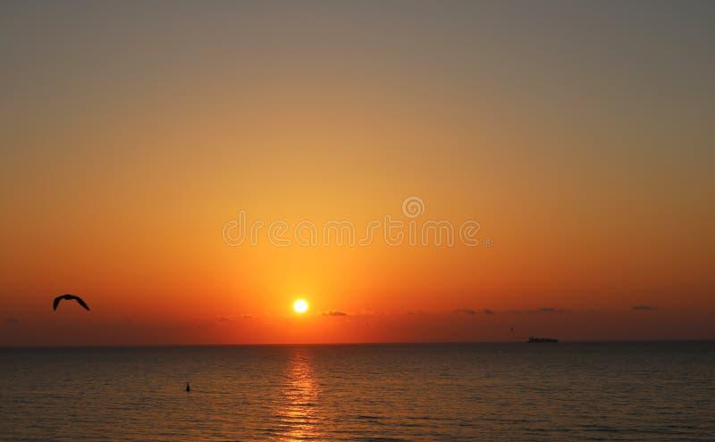 Toneelmening van mooie zonsondergang stock foto's