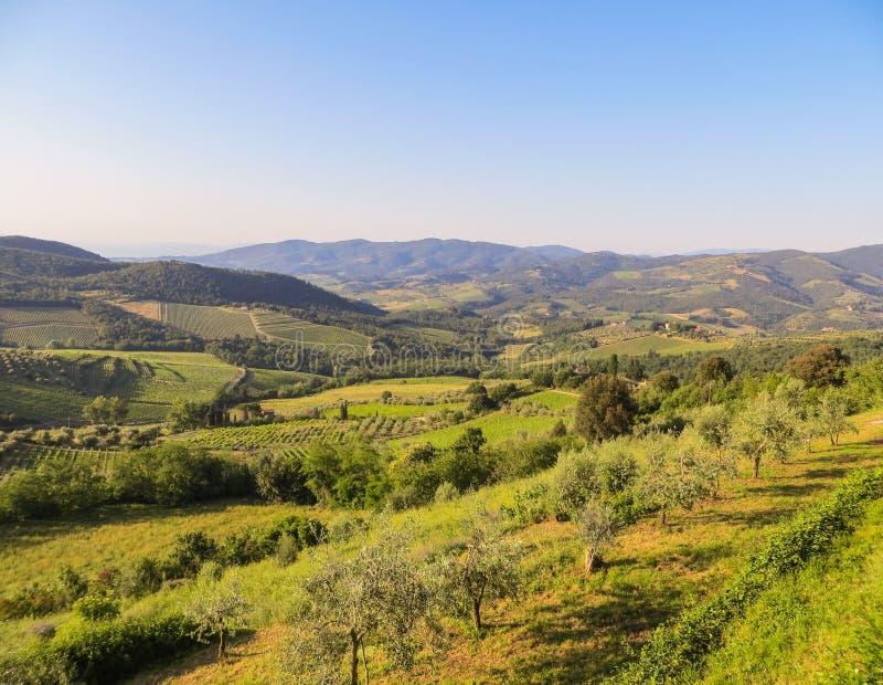 Toneelmening van Toscaans platteland stock foto