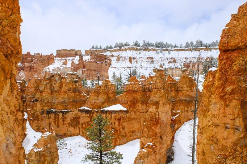 Toneelongeluksboden in Bryce-canion nationaal park met sneeuw stock afbeelding