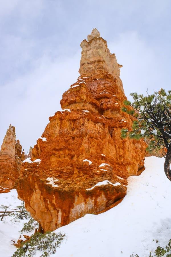 Toneelongeluksboden in Bryce-canion nationaal park met sneeuw stock foto