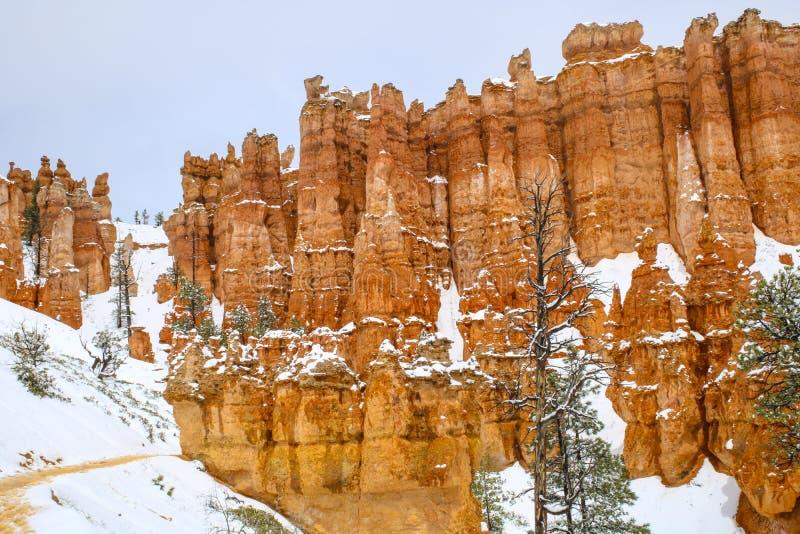 Toneelongeluksboden in Bryce-canion nationaal park met sneeuw royalty-vrije stock foto