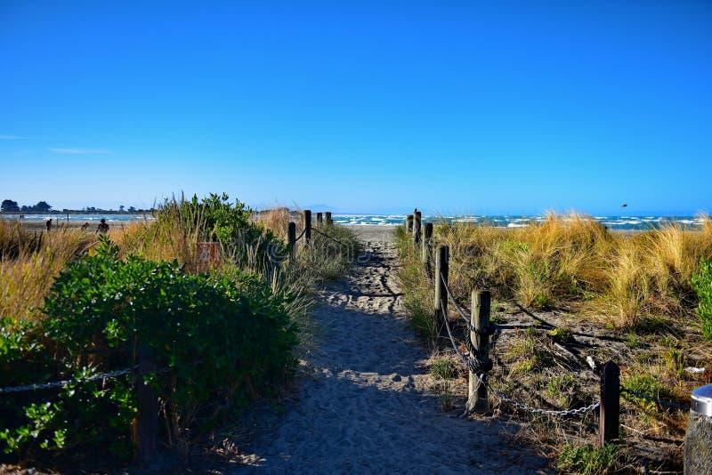 Toneelsumner beach in Christchurch royalty-vrije stock afbeelding
