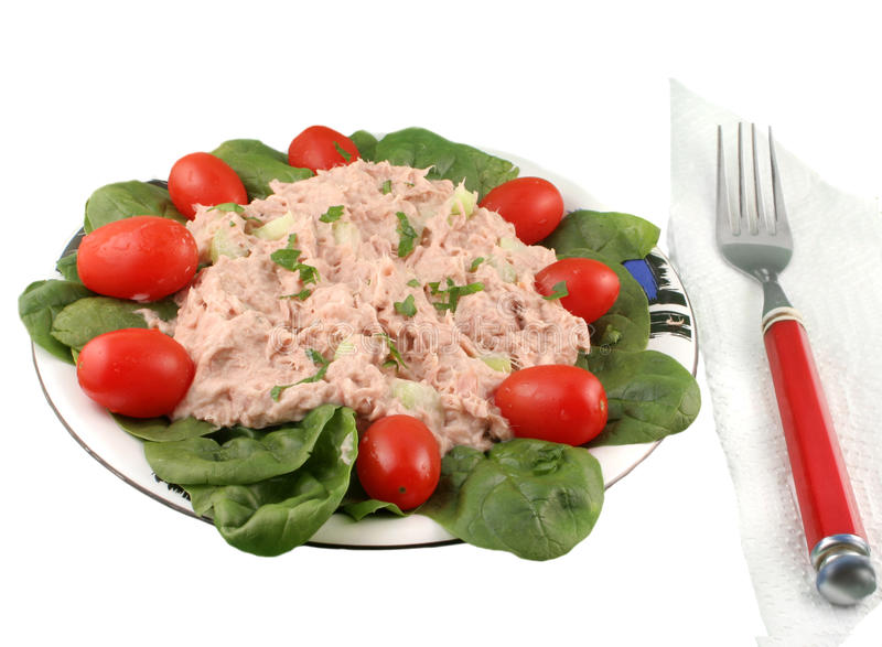 tonfisk för fisksalladspenat arkivfoto