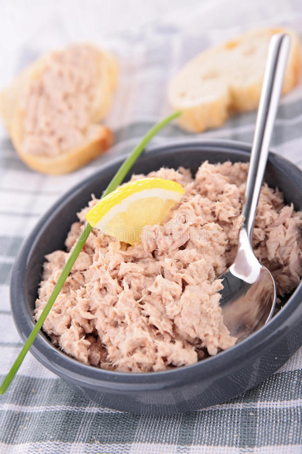 Tonfisk- och ostspridning arkivbild