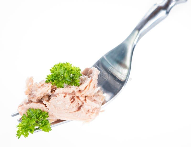 Tonfisk på en gaffel (över vit) royaltyfri bild