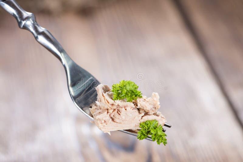 Tonfisk på en gaffel royaltyfri bild