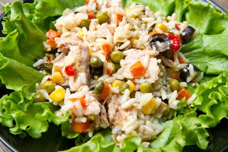 Tonfisksallad med ris och grönsaker royaltyfria foton