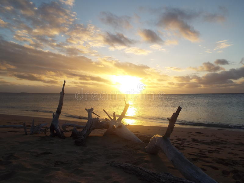 Tonga sunset stock image