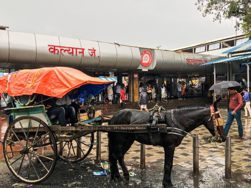 Tongahorse vagn på den Kalyan järnvägsstationen på monsunmaharashtraen INDIEN royaltyfri bild