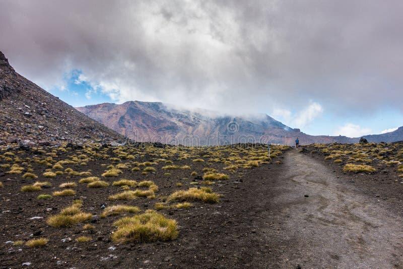 Tongariro Alpejski skrzyżowanie - kłoszenie w kierunku Czerwonego krateru zdjęcie stock