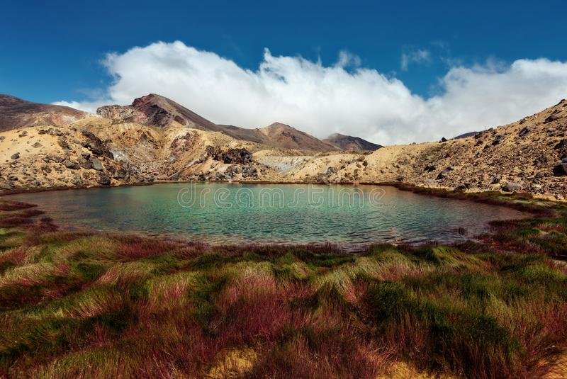 Tongariro alpina korsa Nya Zeeland arkivbild