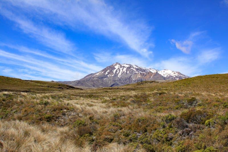 Tongariro-Ausdehnung lizenzfreie stockbilder