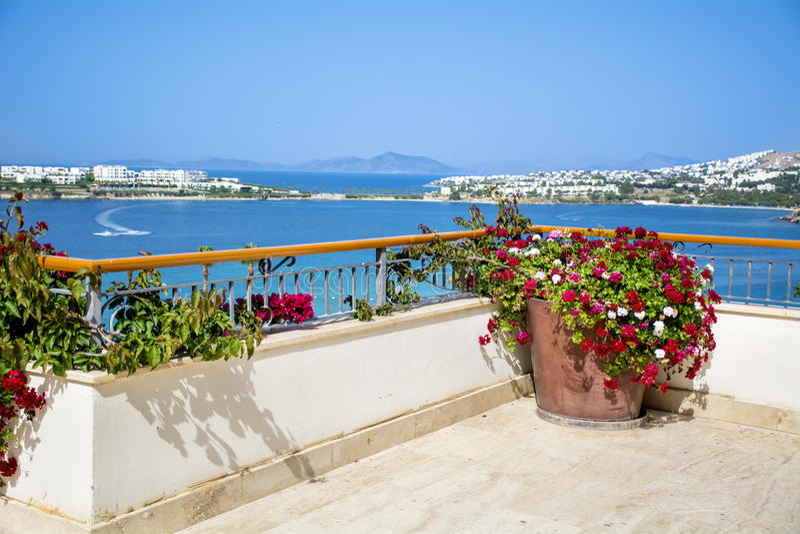 Tongefäß mit blühenden Blumen der Pelargonie auf einer Terrasse mit Seeansicht stockfotografie
