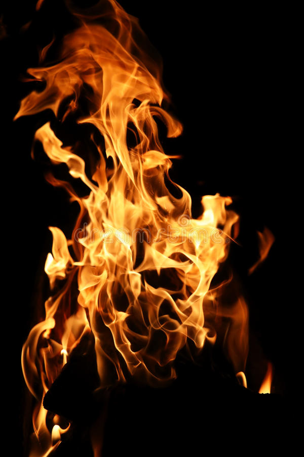 Tongen van vlam van brand van oranjegele kleur van het branden van spar royalty-vrije stock fotografie