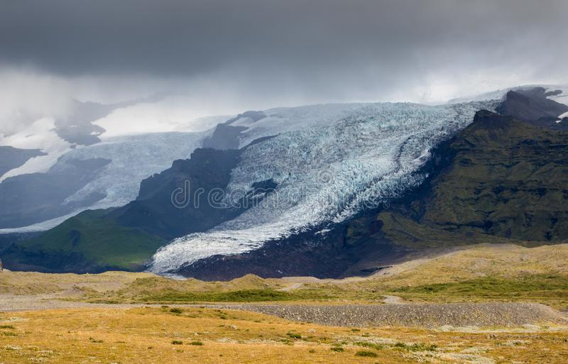 Tongue of Glacier in Iceland drifting down from the green moss mountain in the foggy day. Blue glacier ice is visible stock photos