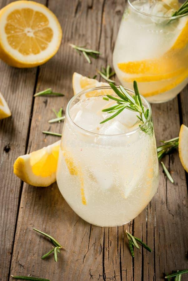 Tonic mit Zitrone und Rosmarin lizenzfreies stockfoto