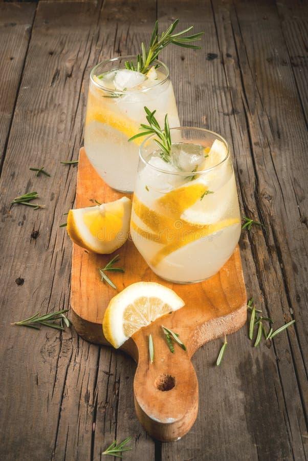 Tonic mit Zitrone und Rosmarin stockfotos