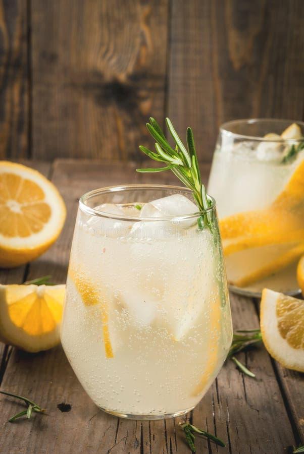 Tonic mit Zitrone und Rosmarin stockfoto