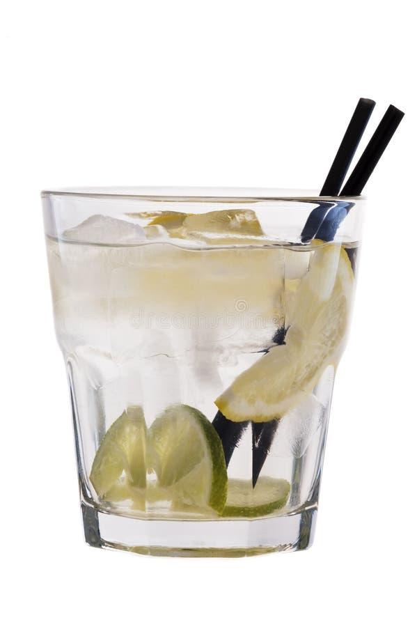 Tonico del gin fotografie stock libere da diritti
