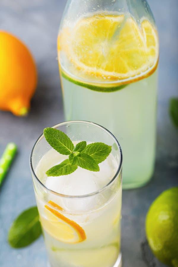 Tonicum met citroen, kalk en pepermunt in een duidelijk glas royalty-vrije stock foto